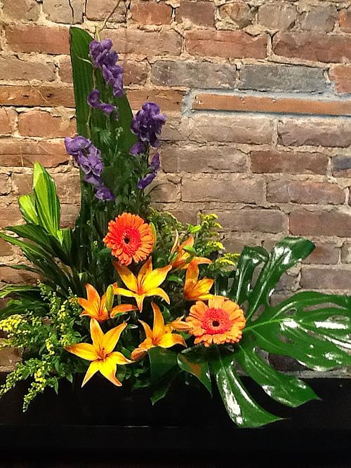 Charlot fleurs et cadeaux votre fleuriste longueuil for Fleurs et cadeaux